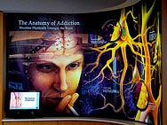 anatomy-addiction-1col.jpg