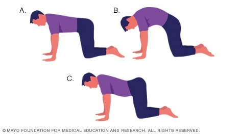 Athletic Medicine Lumbar/Core Strength and Stability Exercises