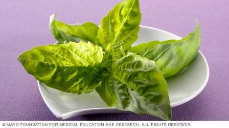 Photograph of fresh basil leaves