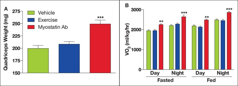 Charts showing outcomes in mice with diet-induced obesity