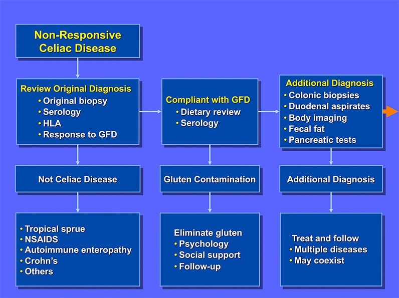 inserting images into a plug wire diagram of a of diagram of a celiac gluten may not be culprit in nonresponsive celiac disease