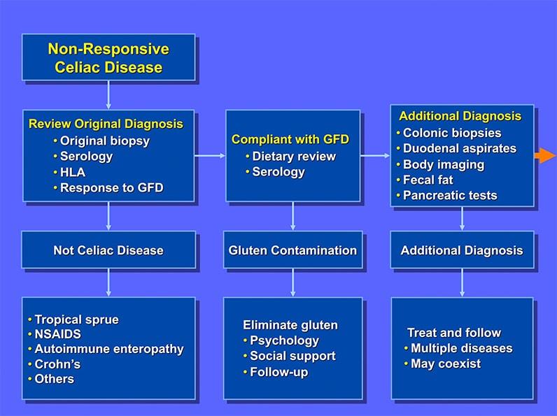 Gluten may not be culprit in nonresponsive celiac disease