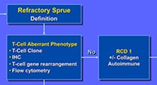 Diagram of evaluation and management of refractory sprue
