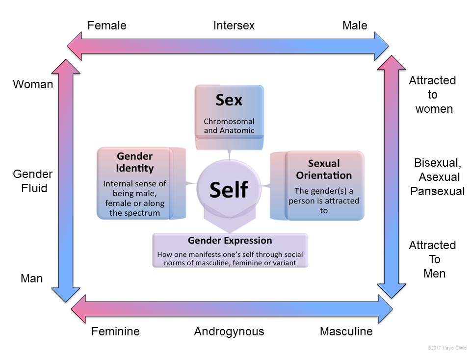 Concepts of sex and gender