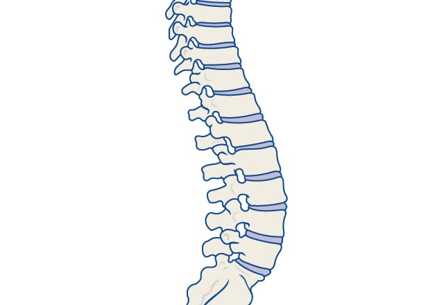 back pain symptoms and causes mayo clinic