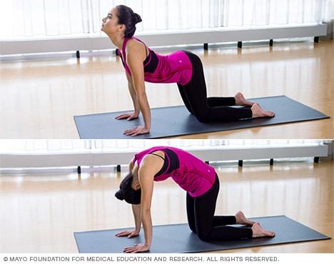 yoga cow pose  yoga for you