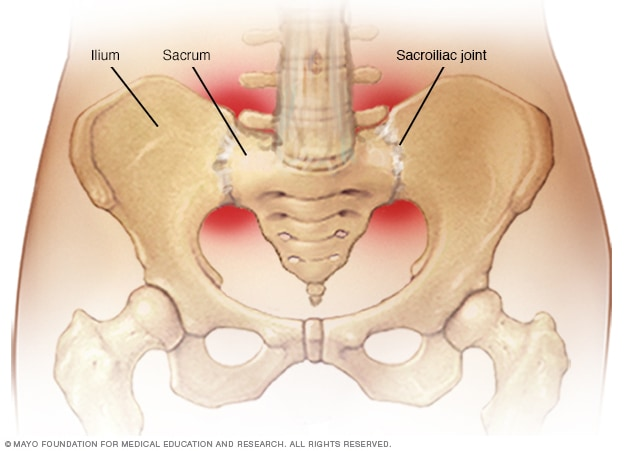 Illustration showing sacroiliac joints