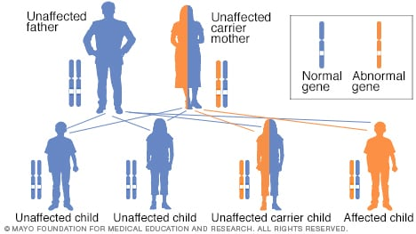 Illustration of X-linked recessive inheritance with carrier mother