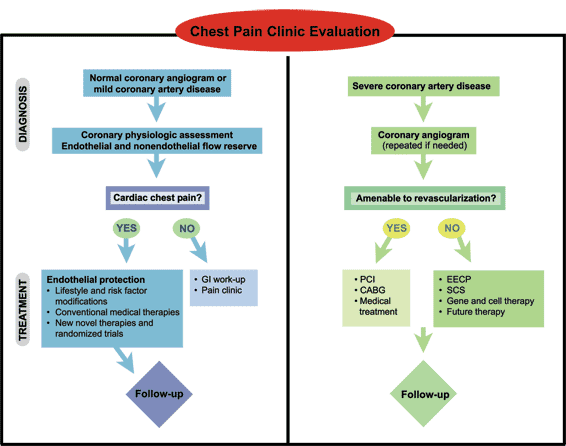 Diagram describing a Chest Pain Clinic evaluation