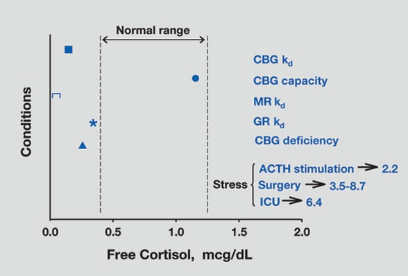 Chart of pathophysiology of free cortisol in humans