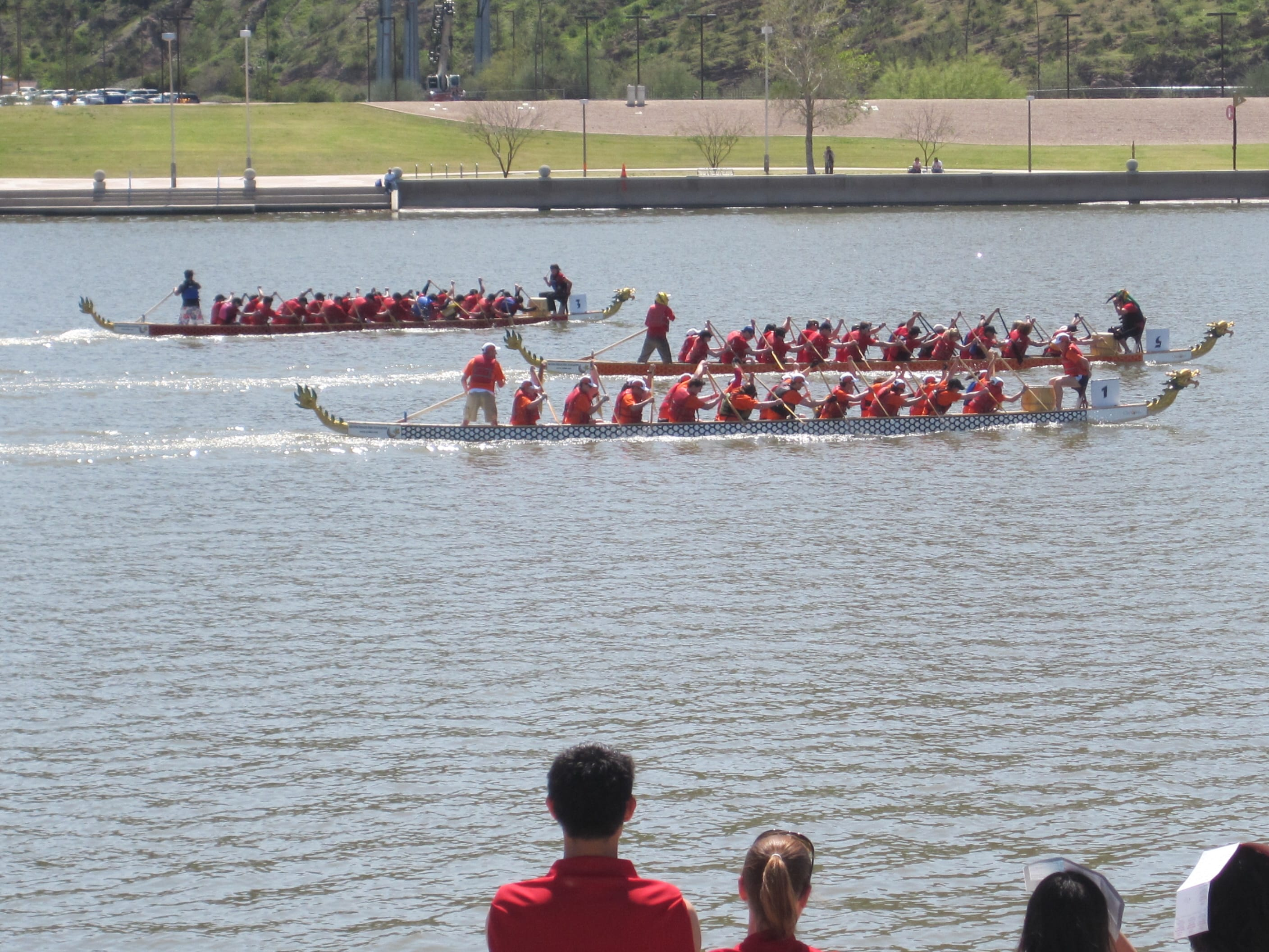 Mayo Clinic corporate dragon boat team Synchronicity