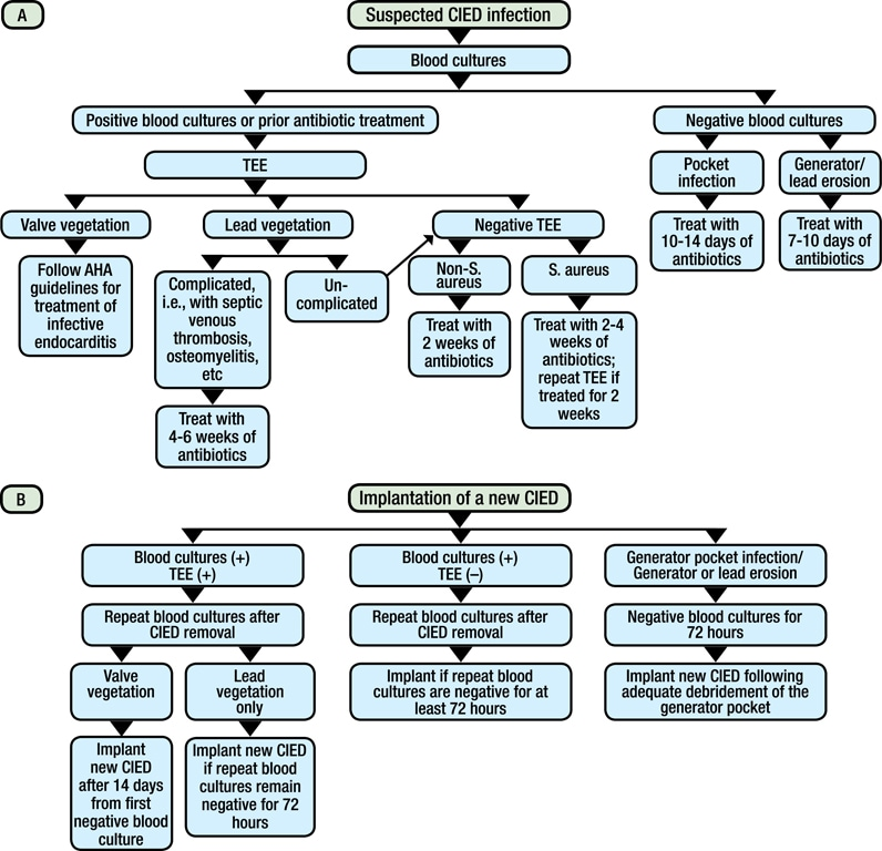 Chart of a stepwise approach to management of suspected cardiovascular implantable electronic device infection