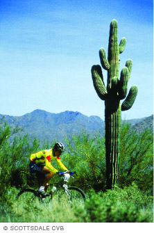 A person biking in Arizona