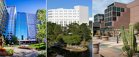 Mayo Clinic's three campuses in Rochester, Minnesota; Jacksonville, Florida; and Phoenix/Scottsdale, Arizona